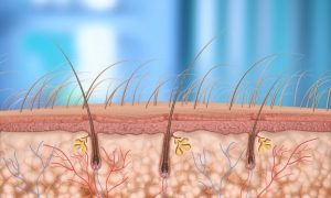 FUE hair follicular extraction