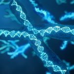 DNA-Family History and the Risk of Hair Loss-RHRLI-June-2019