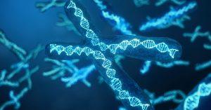 Family history genetics