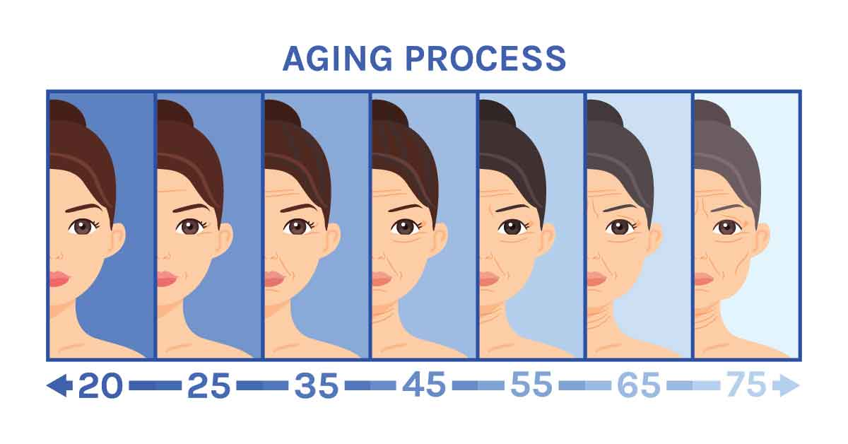 the hair aging process